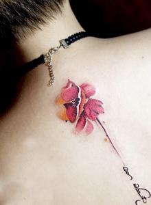 最受女生欢迎的简单植物小花朵纹身图案大全