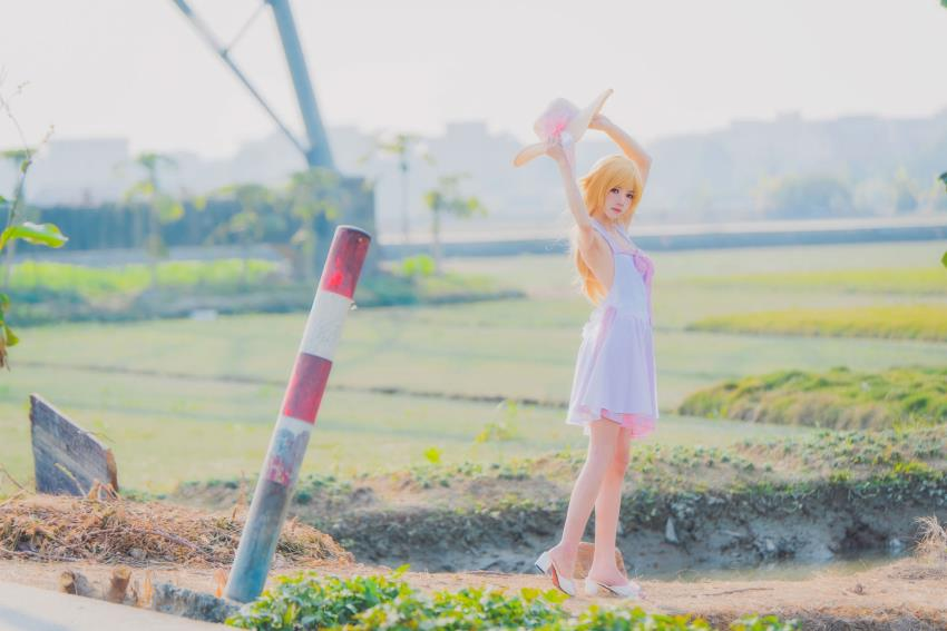 桜桃喵Cosplay物语系列忍野忍可爱小萝莉妹子写真套图